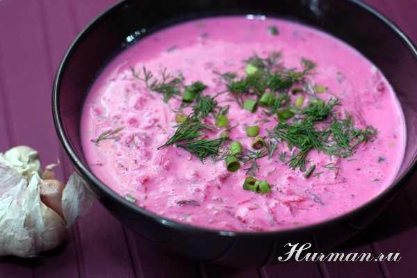 Рецепт супа из свеклы и кефира